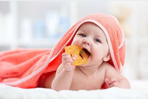 Top 5 Best Baby Teether